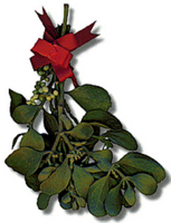Mistletoe Clip Art